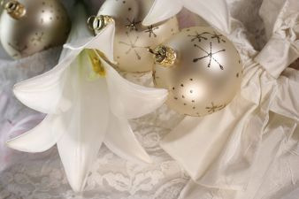 Bald schon ist Weihnachten... wir haben da einen lesenswerten Geschenktipp für Sie! (Photo: adpic)