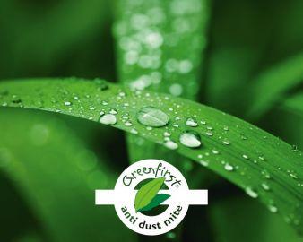Greenfirst.jpg