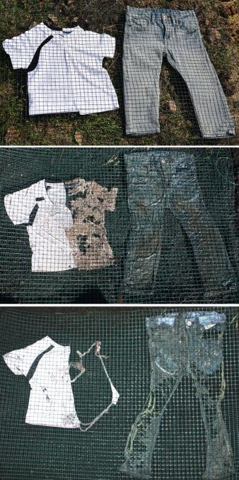 Biodegradation-von-Textilien.jpg