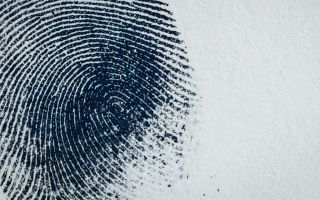 Fingerabdruck.jpg