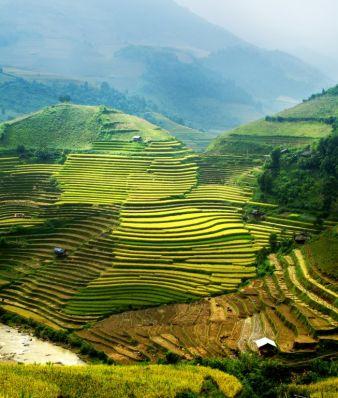 vietnamfotolia47147898l.jpg
