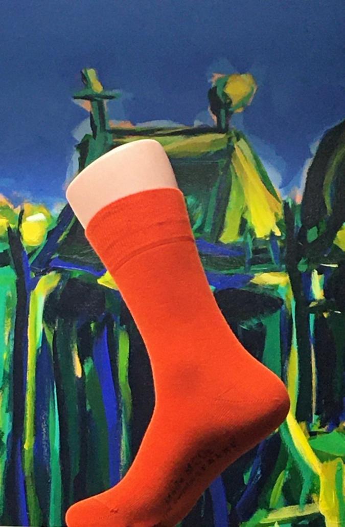 Falke--Socke-mit.jpg