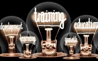 Gluehbirnen-Bildung-Wissen.jpeg