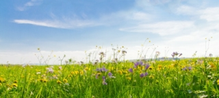 The Alliance for Sustainable Textiles is causing concern among the industry Photo: fotolia