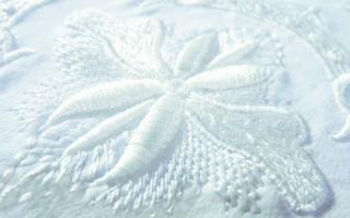 Plastic, tone on tone embroidery Photos: Madeira
