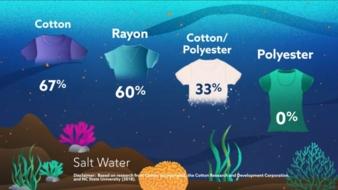 Cotton-Incorporated-Salt.jpg