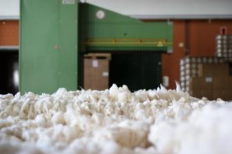 Baumwolle-nach-Ballenoeffnung.jpg