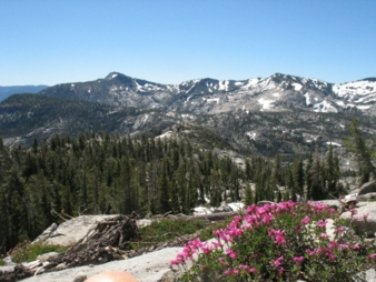 PCTA. Indian Heaven Wilderness Mark Larabee