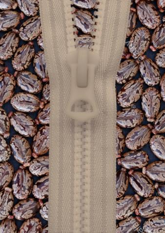 Nyguard-Seeds-Rizinussamen.png
