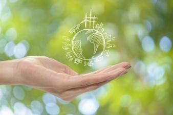 Umwelt-Nachhaltigkeit.jpg