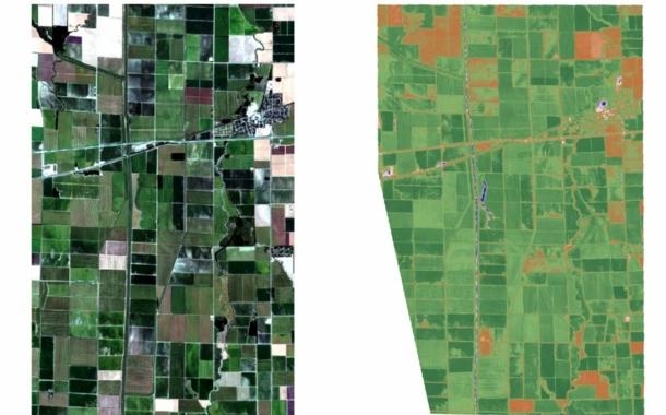 Cotton: Progressive farming works like this